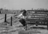 SD800253A, Ordnance Survey Revision Point photograph in Greater Manchester