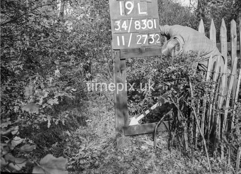 SD830119L, Ordnance Survey Revision Point photograph in Greater Manchester