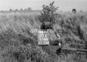 SD780420B, Ordnance Survey Revision Point photograph in Greater Manchester