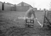 SD800670A, Ordnance Survey Revision Point photograph in Greater Manchester