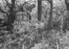 SD780419B, Ordnance Survey Revision Point photograph in Greater Manchester