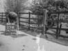 SD790505A, Ordnance Survey Revision Point photograph in Greater Manchester