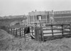 SD780616A, Ordnance Survey Revision Point photograph in Greater Manchester
