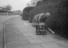 SD800519L, Ordnance Survey Revision Point photograph in Greater Manchester