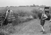 SD790520B, Ordnance Survey Revision Point photograph in Greater Manchester