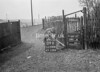 SD780609B, Ordnance Survey Revision Point photograph in Greater Manchester