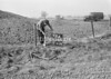 SD630796A, Man marking Ordnance Survey minor control revision point with an arrow in 1950s