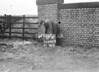 SD640517A, Man marking Ordnance Survey minor control revision point with an arrow in 1950s