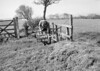 SD630785B, Man marking Ordnance Survey minor control revision point with an arrow in 1950s