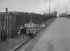 SD640442C, Man marking Ordnance Survey minor control revision point with an arrow in 1940s