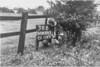 SD650338B, Man marking Ordnance Survey minor control revision point with an arrow in 1940s