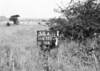 SD630358A, Man marking Ordnance Survey minor control revision point with an arrow in 1940s