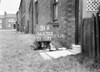 SD630351A, Man marking Ordnance Survey minor control revision point with an arrow in 1940s