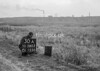 SD580330A, Man marking Ordnance Survey minor control revision point with an arrow in 1950s