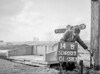 SD600314B, Man marking Ordnance Survey minor control revision point with an arrow in 1950s