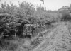 SD560738B, Ordnance Survey Revision Point photograph in Greater Manchester