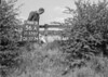 SD570756A, Man marking Ordnance Survey minor control revision point with an arrow in 1950s
