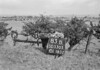 SD530583B, Ordnance Survey Revision Point photograph in Greater Manchester