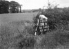 SD540338B, Ordnance Survey Revision Point photograph in Greater Manchester