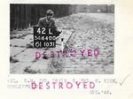 Destroyed-5