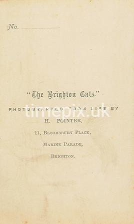 Reverse of Victorian photograph album filler card