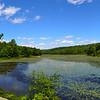 Bear Swamp Lake, NJ