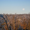 Full Moon After Ice Storm - Waywayanda State Forest, NJ