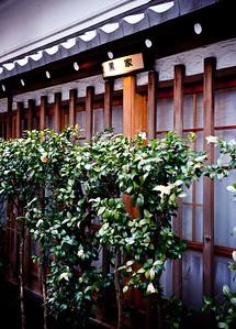 大黒家 Daikokuya Tempura