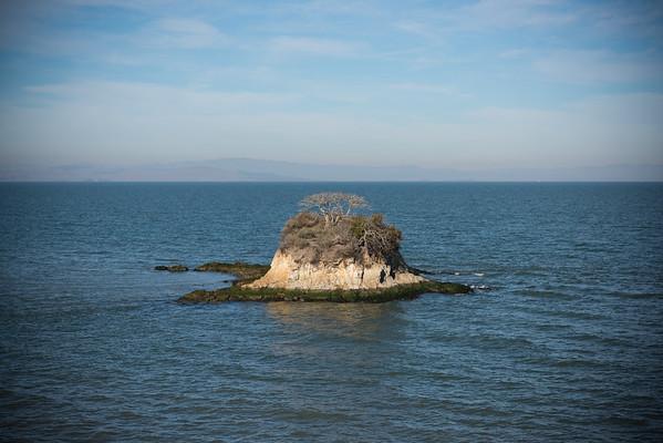 Rat Rock Island, near China Camp