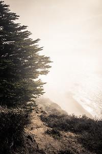 Pillar Point Bluff