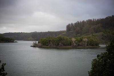 Live Oak Island, Lake Chabot