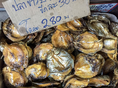 fish market 201801_02_IMG_8778