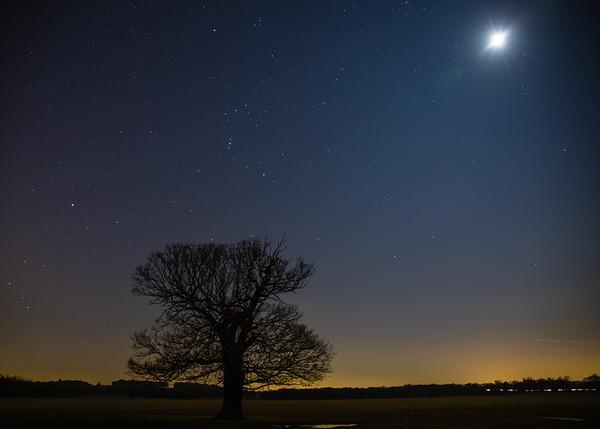 Moon over Windsor Great Park