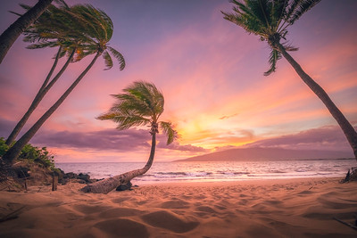A Kihei Dream
