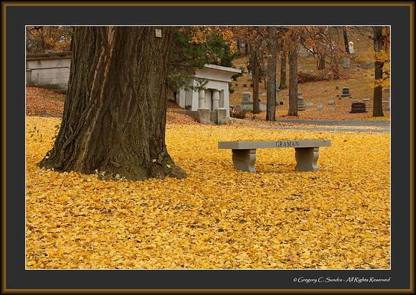 Woodland_0013_framed
