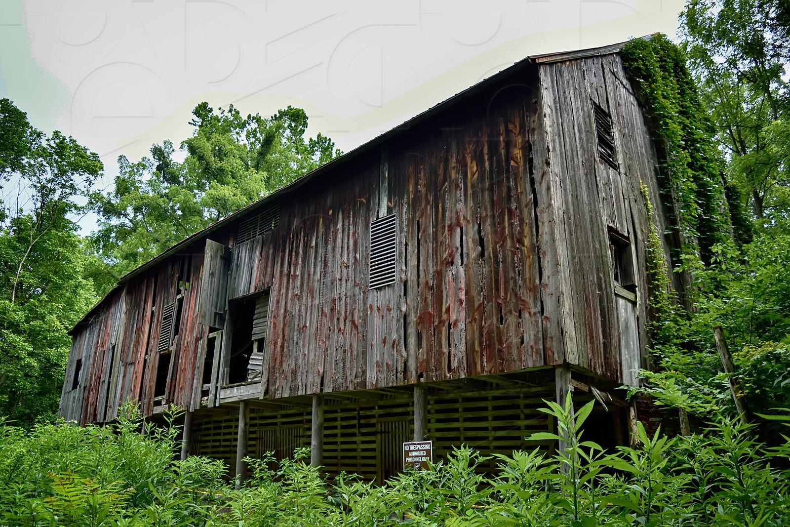 Barn a Long Time