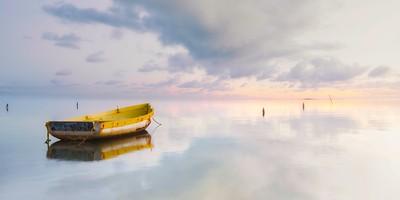 Tropical Reflections II