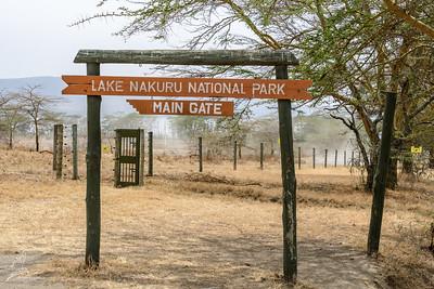 Lake Nakuru NP 2017