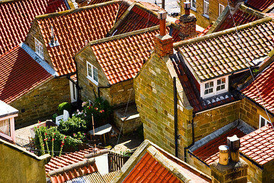 The Roof of Runswick Bay