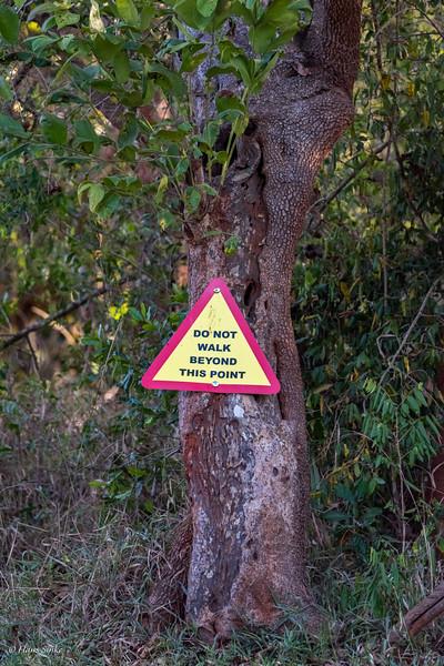 No fences at Amuka Lodge, just warning signs