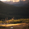 Montana Dwelling