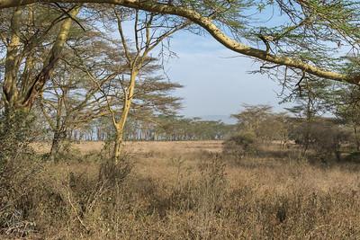Landscape of Lake Nakuru National Park