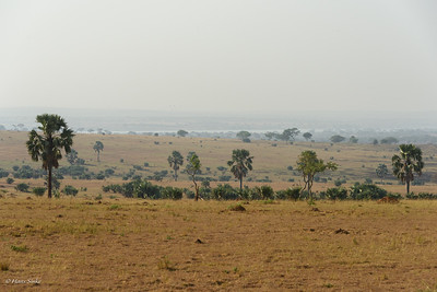 Victoria Nile in the background