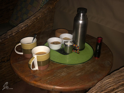 Nothing beats waking up with a fresh coffee and biscuit in front of your tent!