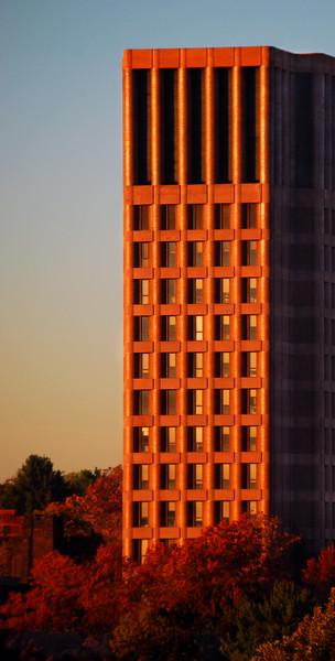 Glistening Tower
