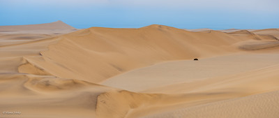 Atlantic ocean behind the dunes!