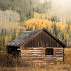 Fall on Ashcroft