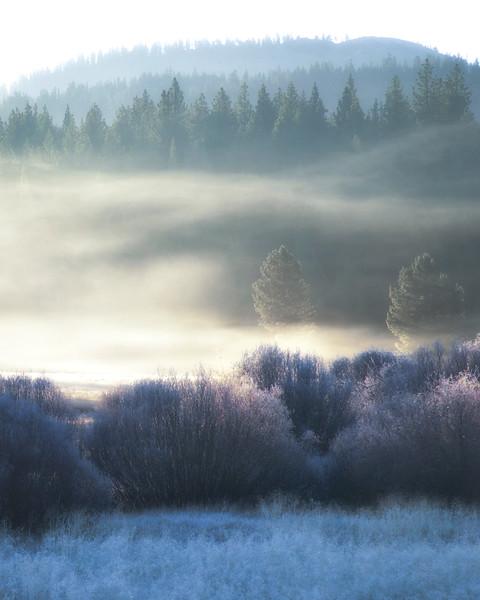 Tahoe Morning Fog