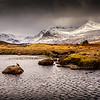 The Grouse of Rannoch Moor
