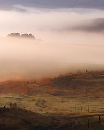 Drakensberg Morning